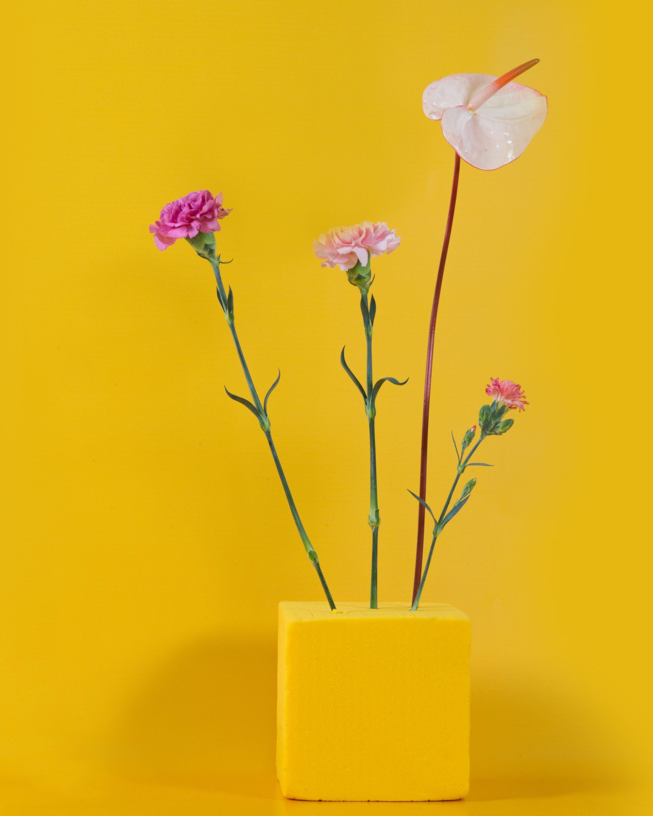 Corners in-store - Fleurir votre offre en boutique avec un corner éphémère ou éternel.