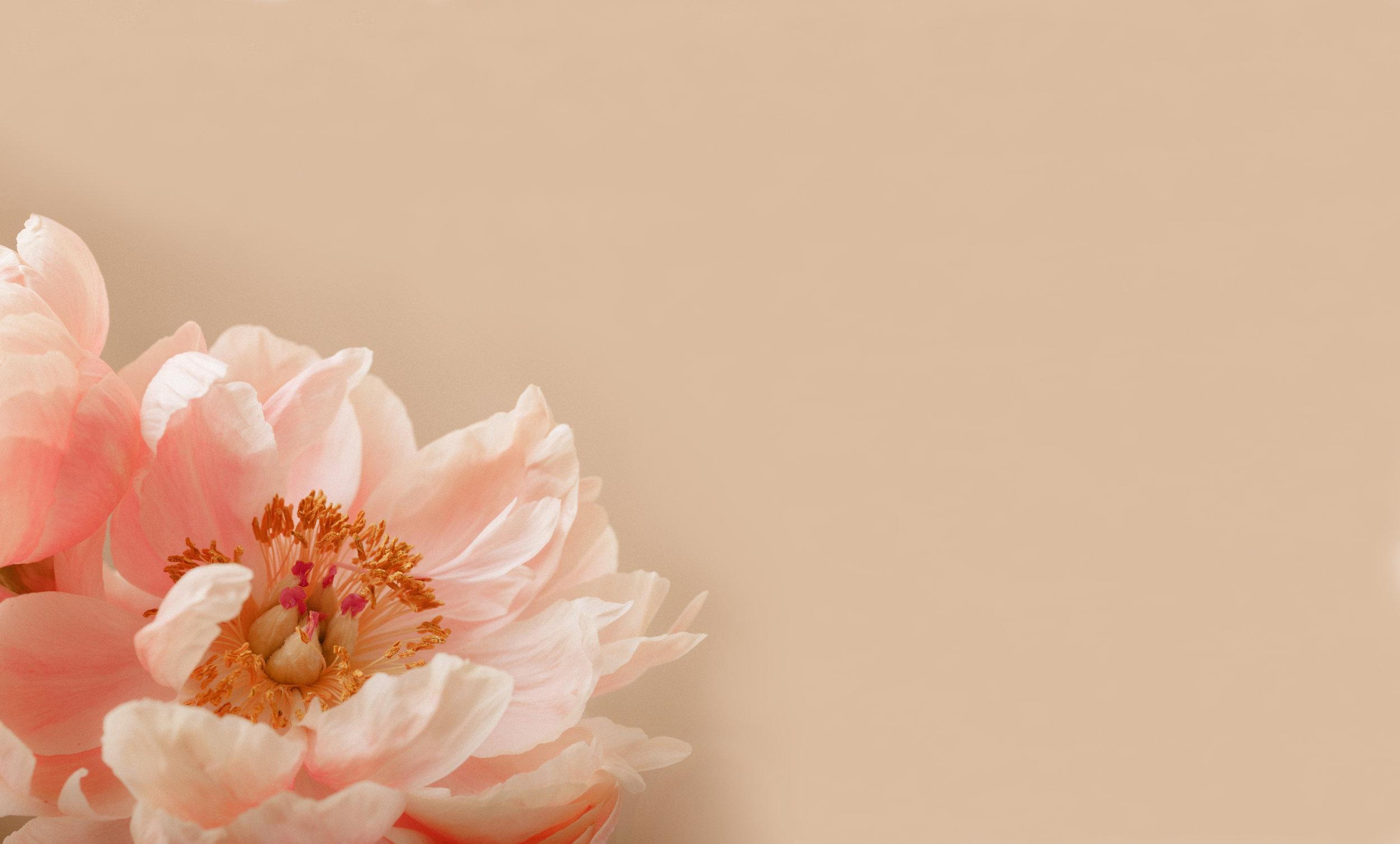 Un bouquet,à faire livrer. -