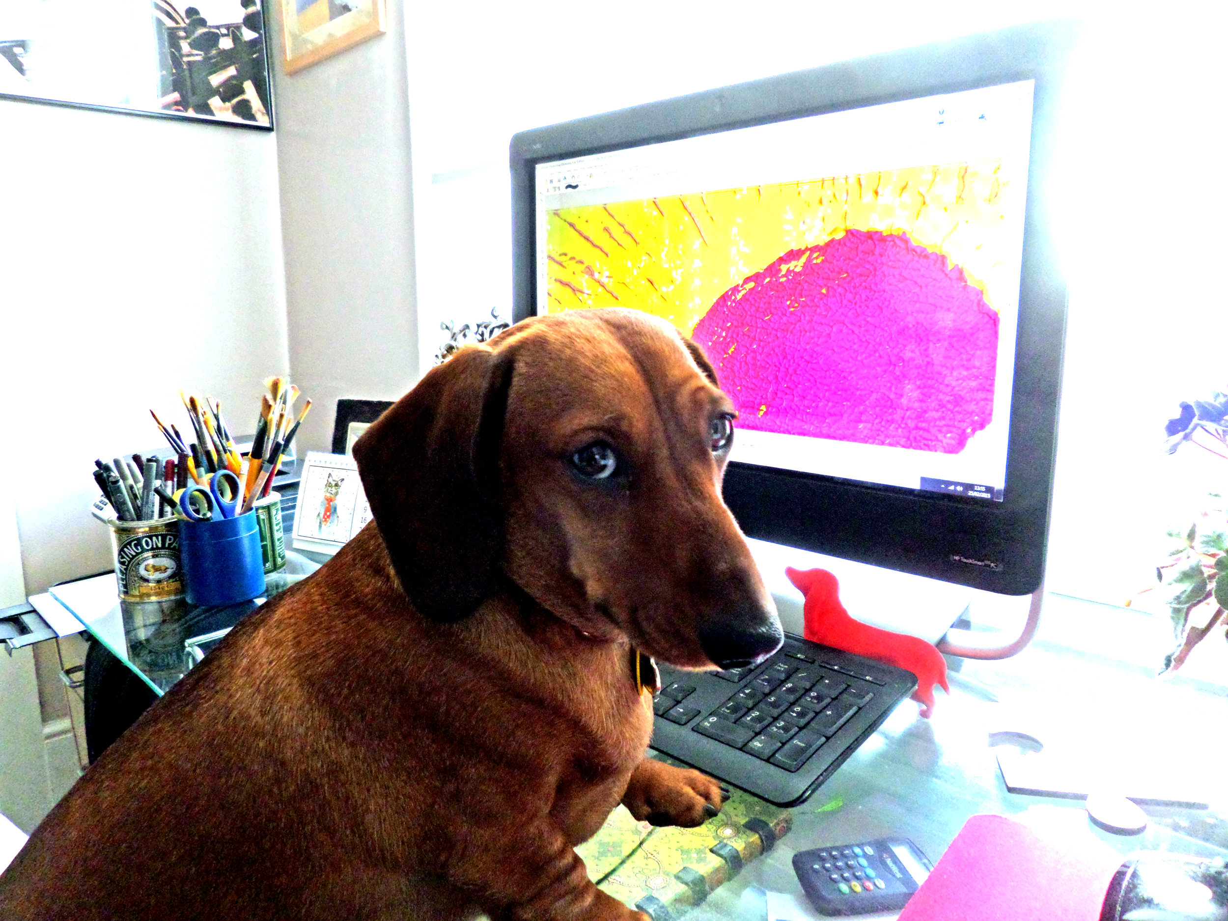 Monty & Me are pleased to take commissions for one off pieces - 'How do you do that?'