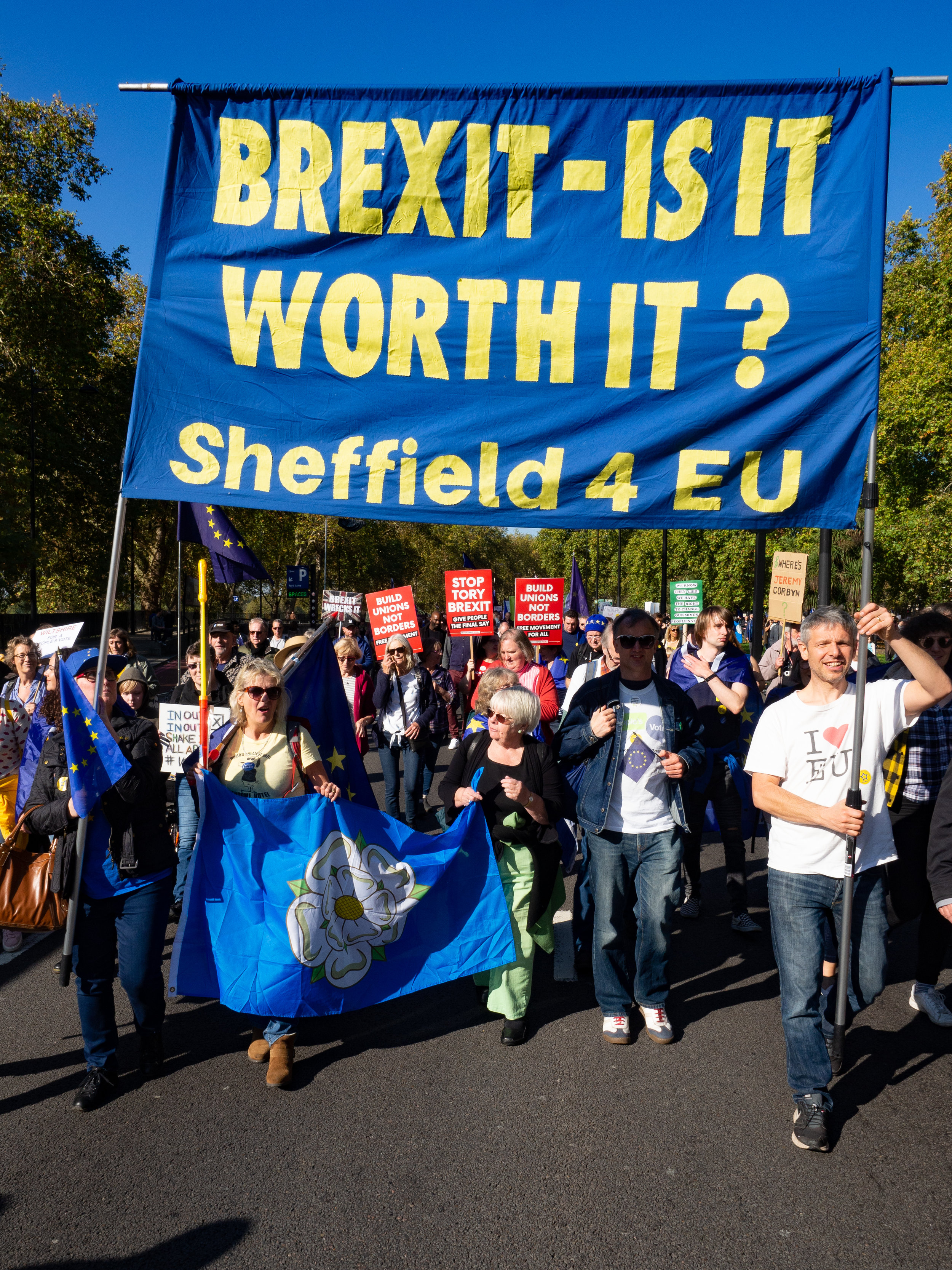 Sheffield For Europe at the People's Vote March