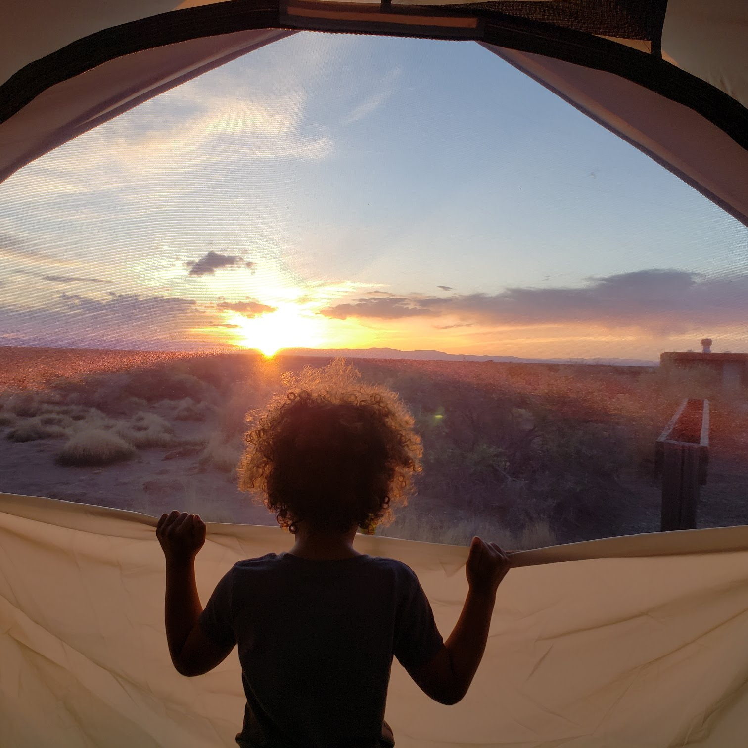Isis watching the sunset from our tent in San Luis State Wildlife Area Colorado.