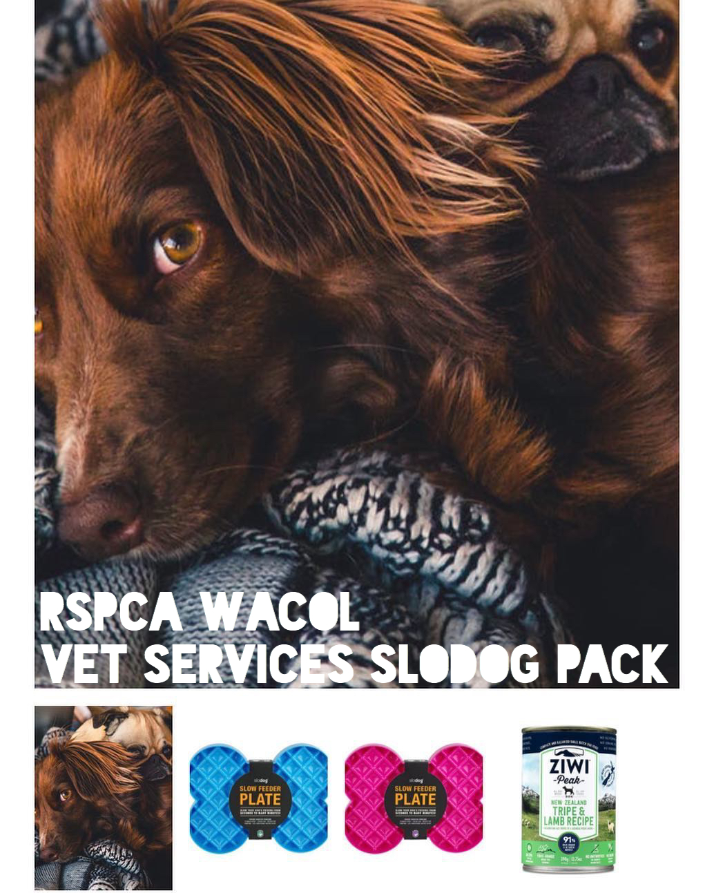 RSPCA Wacol Vet Services - We put together this slodog pack to help the amazing Vet Services team at RSPCA Qld Wacol shelter reach their goal of replacing all the bowls in their vet block with SloDog slow feeder platesThe team there have been implementing some excellent enrichment routines and see the benefits of the SloDog feeders and how well they will fit with the needs of their patients.The campaign was highly successful with the team surpassing their goal within 3 weeks of campaign. In total the team received 18 slodog plates (+ 9 bonus ziwi peaks to spoil some pups) and have thrown out all their conventional feeders within the facility.