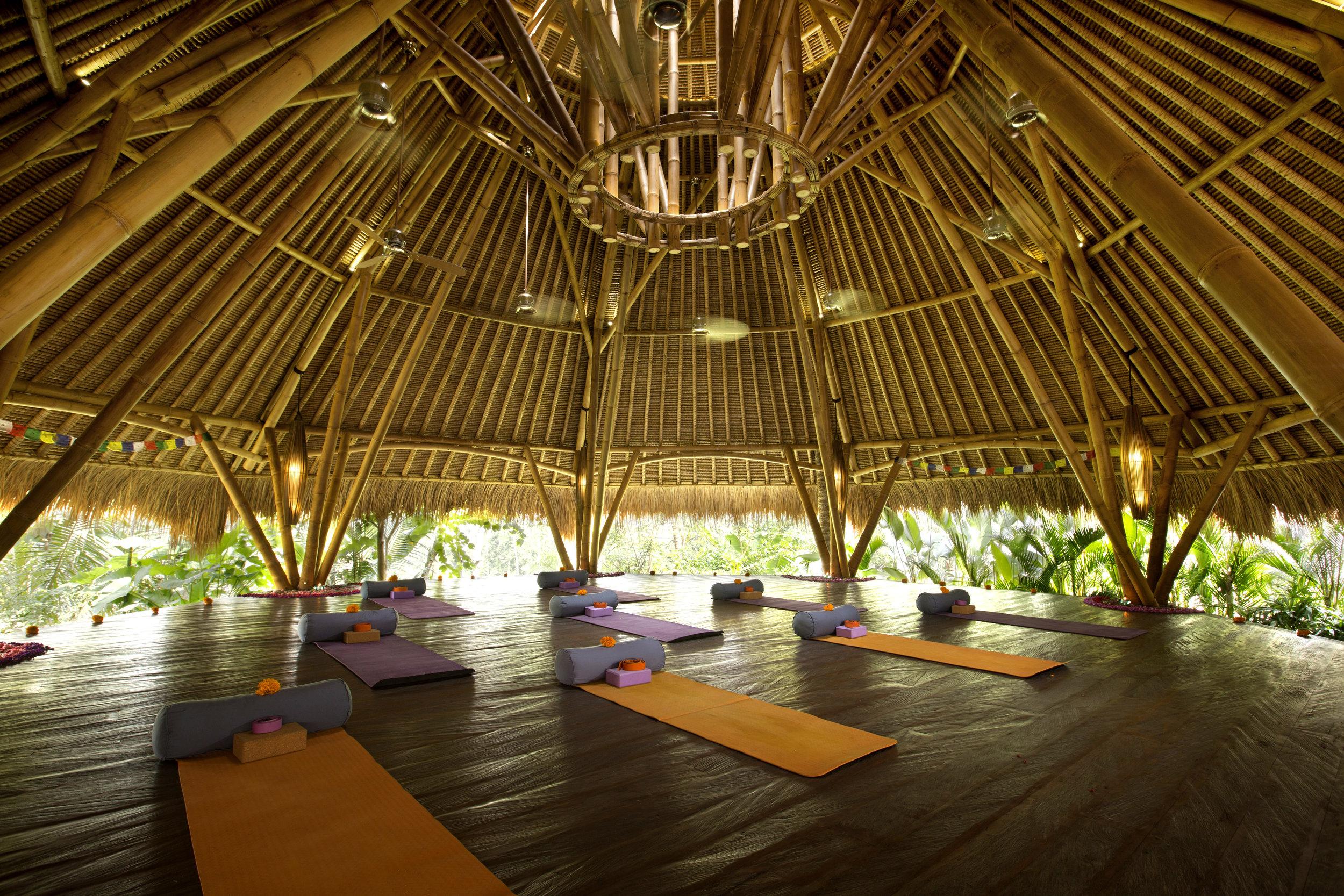 Yoga Shala (11).jpg