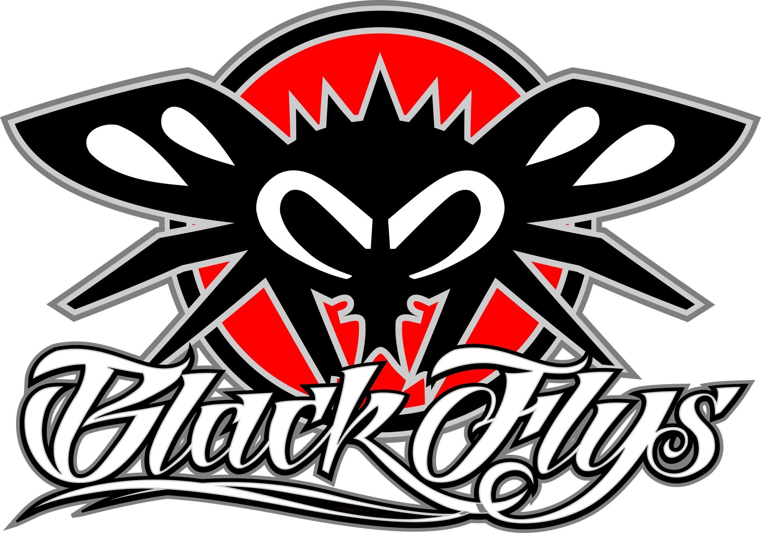 black flys.jpg
