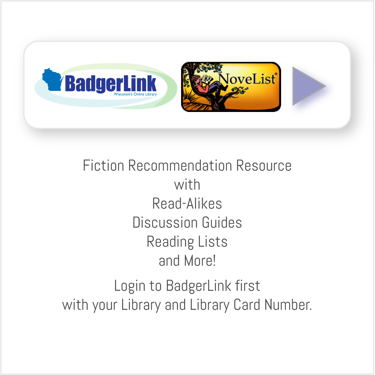 Badgerlink Novelist.png