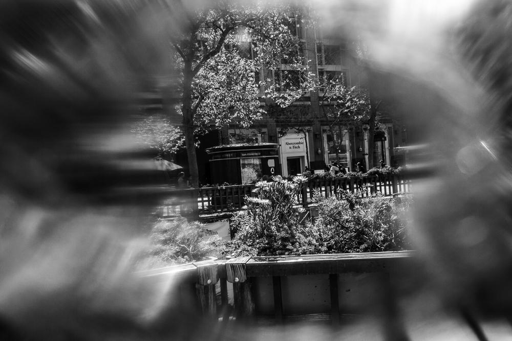 untitled shoot-006.jpg