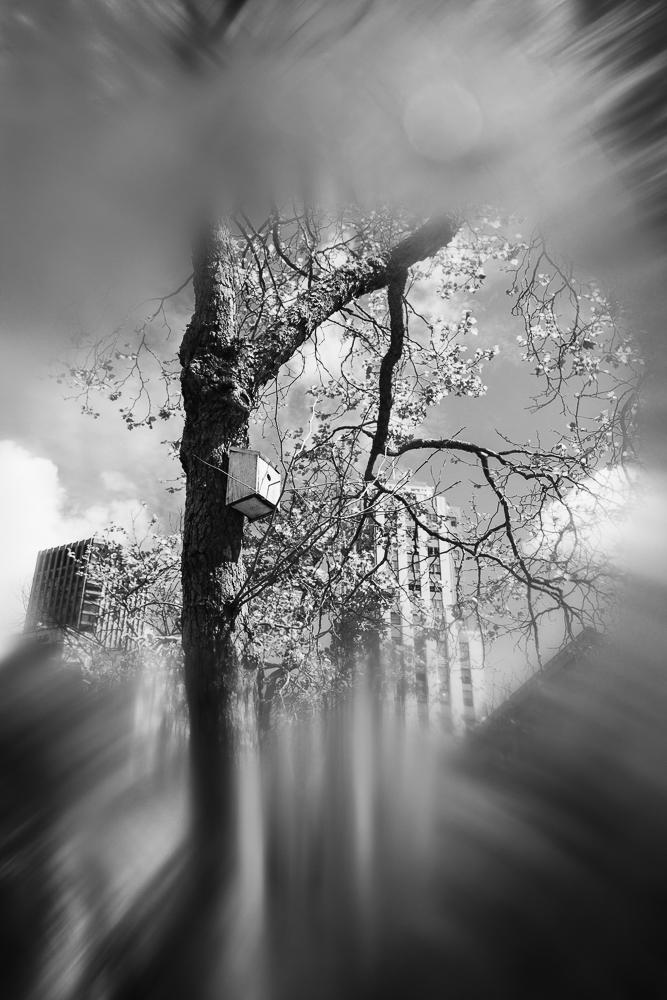 untitled shoot-016.jpg