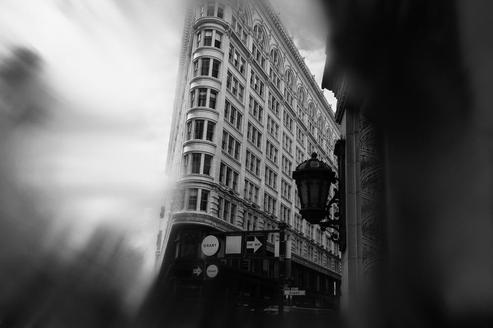 untitled shoot-017.jpg