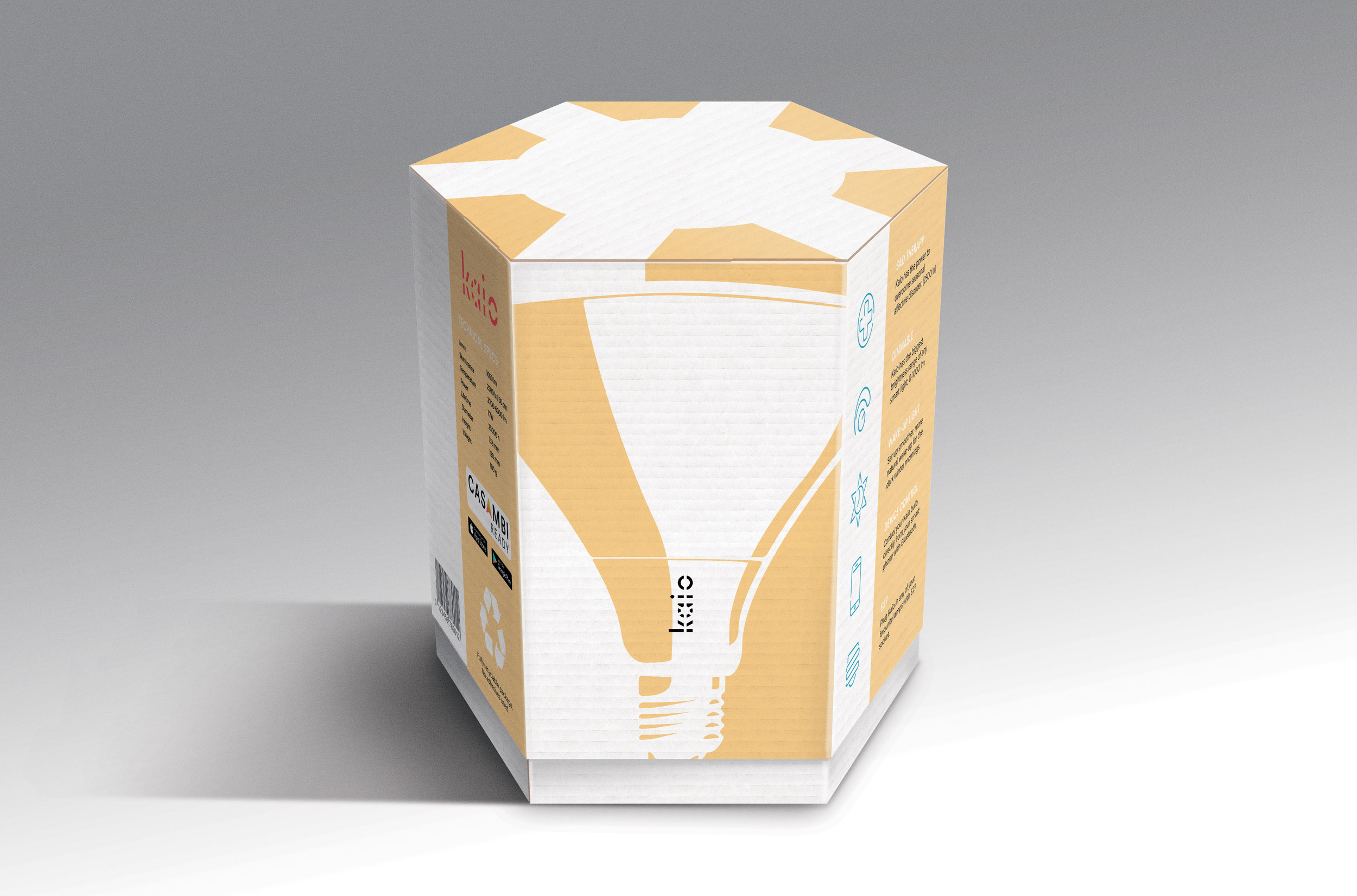 The final package design uses the bulb as a graphic element together with a shape symbolising the sun. This image is a photoshop rendering of the package.