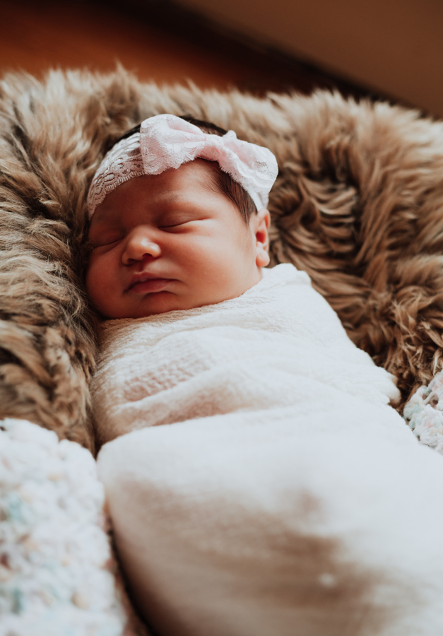 Newborns in River Oaks  | zinnphotography.net