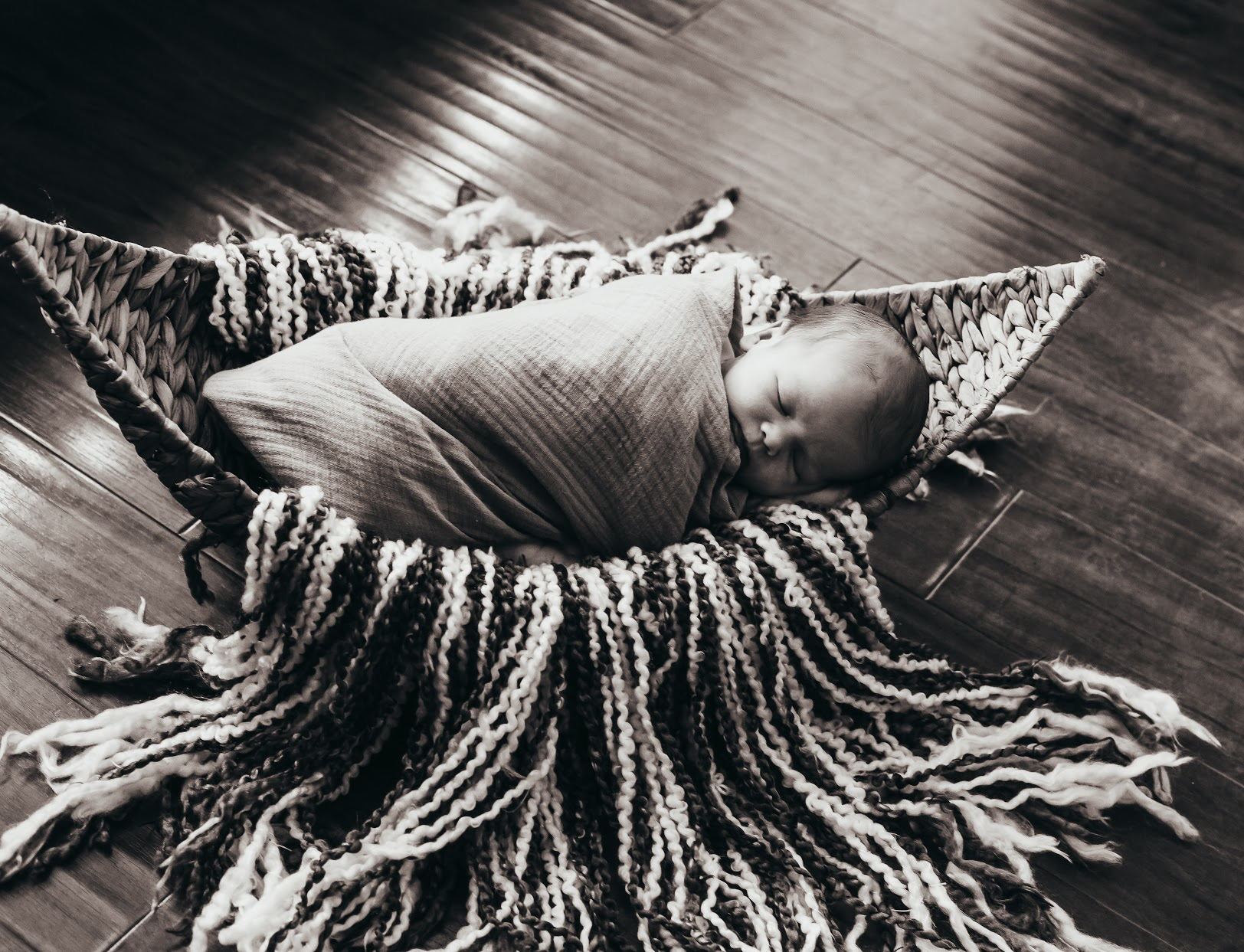 Studio Newborn Sessions  | zinnphotography.net