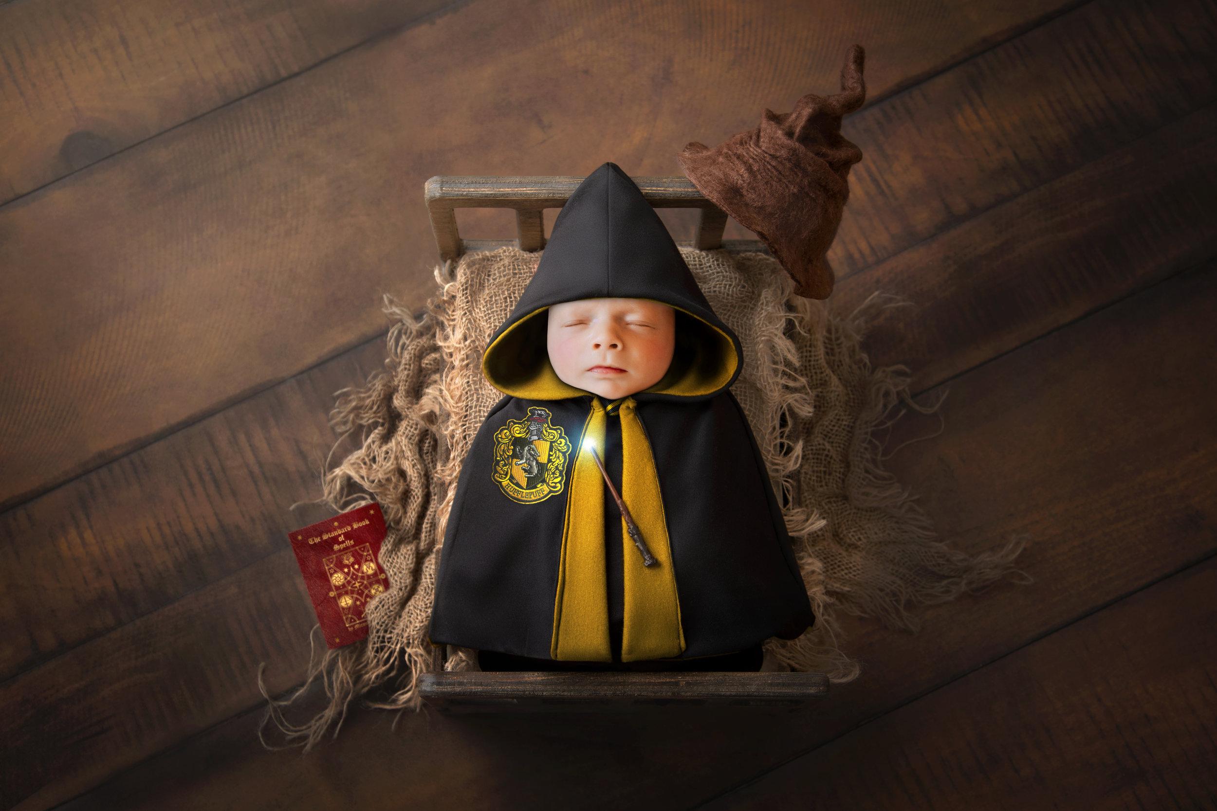 Zinnphotography.net_Hufflepuff_Harry-Potter