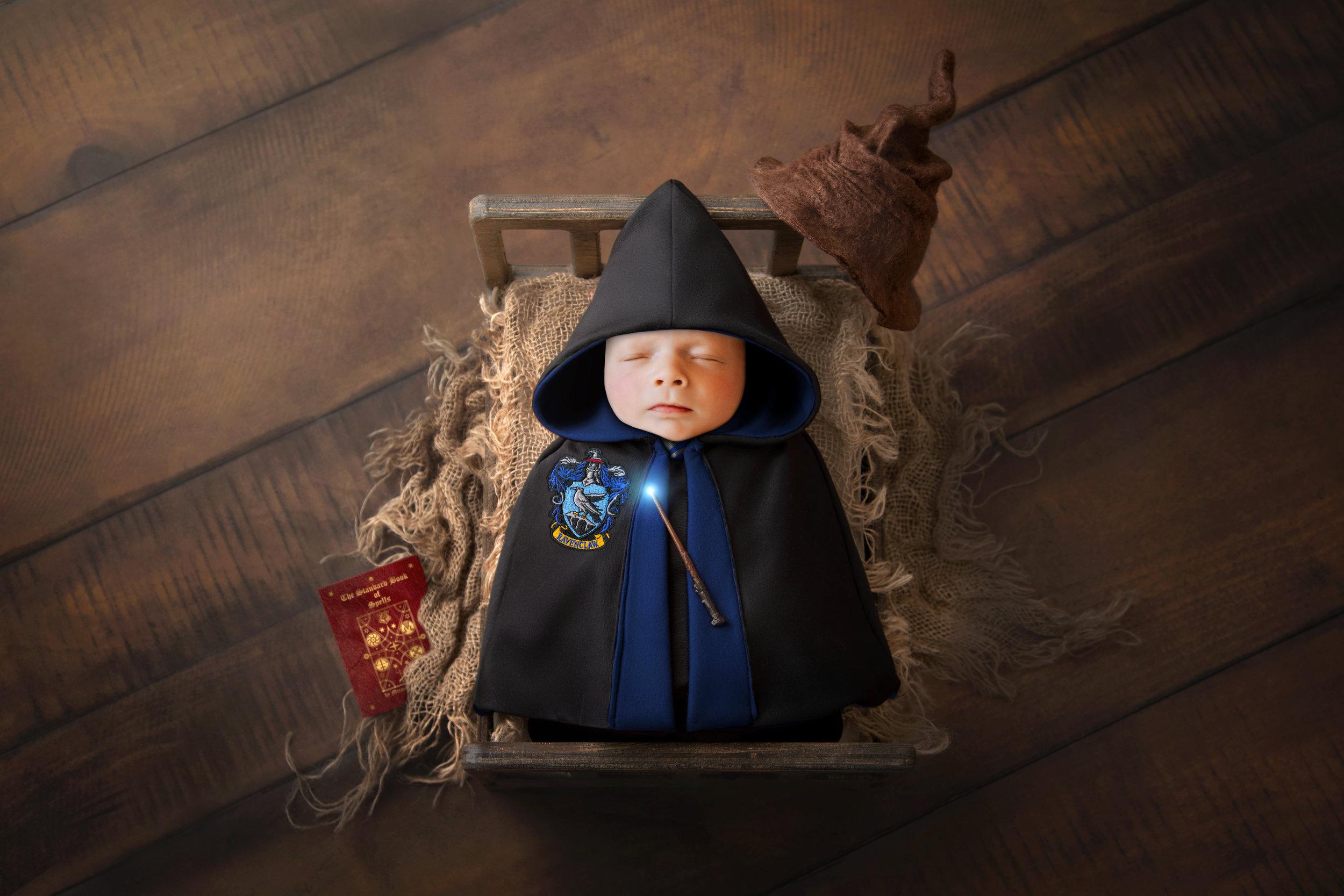 Zinnphotography.net_Ravenclaw_Harry_Potter