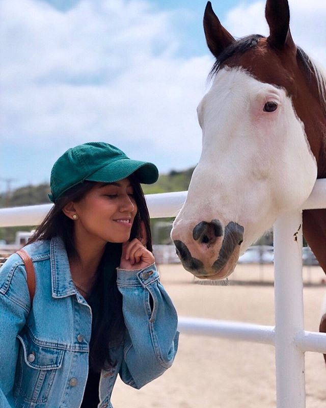 Kiss kiss, Magic 💋 It was a blissful day- I cradled a chicken in my arms, fed carrots to the sweetest horses, rubbed pigs' bellies, pet a turkey and an emu, and groomed a cow. Thank you @thegentlebarn for creating a safe space for these animals and a place for us humans to connect with them. ❤️ 🐴 🐖 🦃 🐄