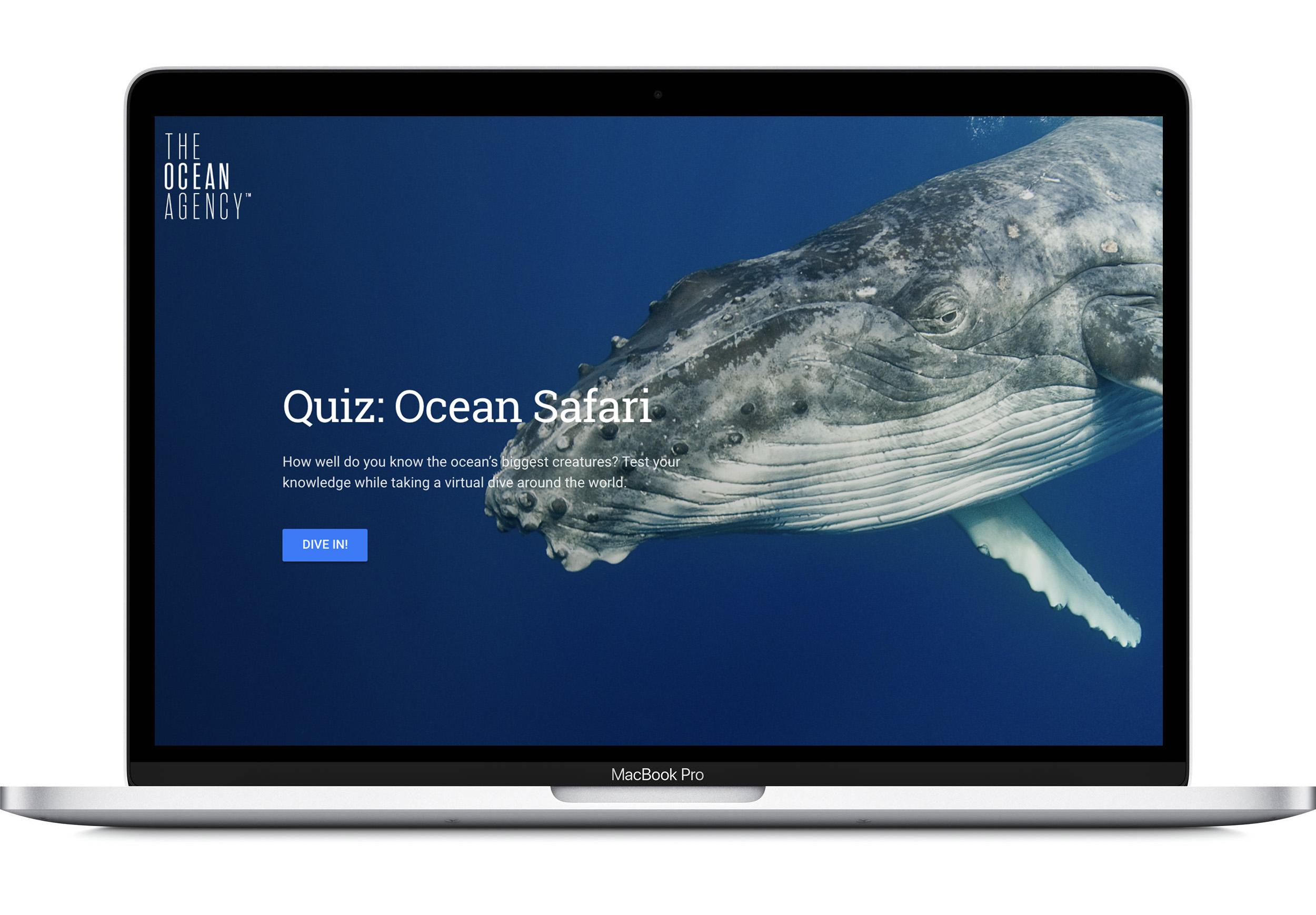 laptopw+background-whale.jpg