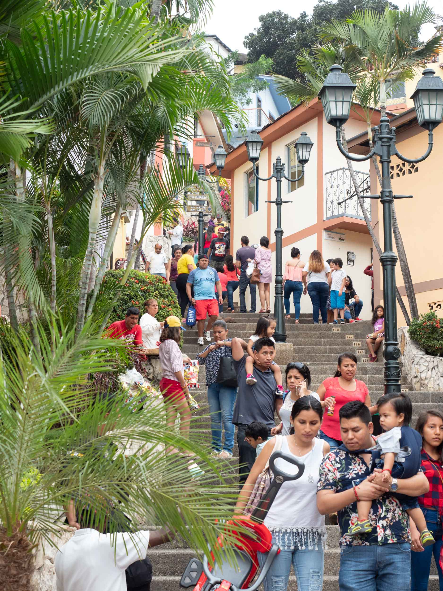 The oldest neighborhood in Guayaquil, Las Peñas, was a fascinating climb of 444 steps. I failed in every way in this picture to capture the experience of visiting that community. Click picture for a larger image.