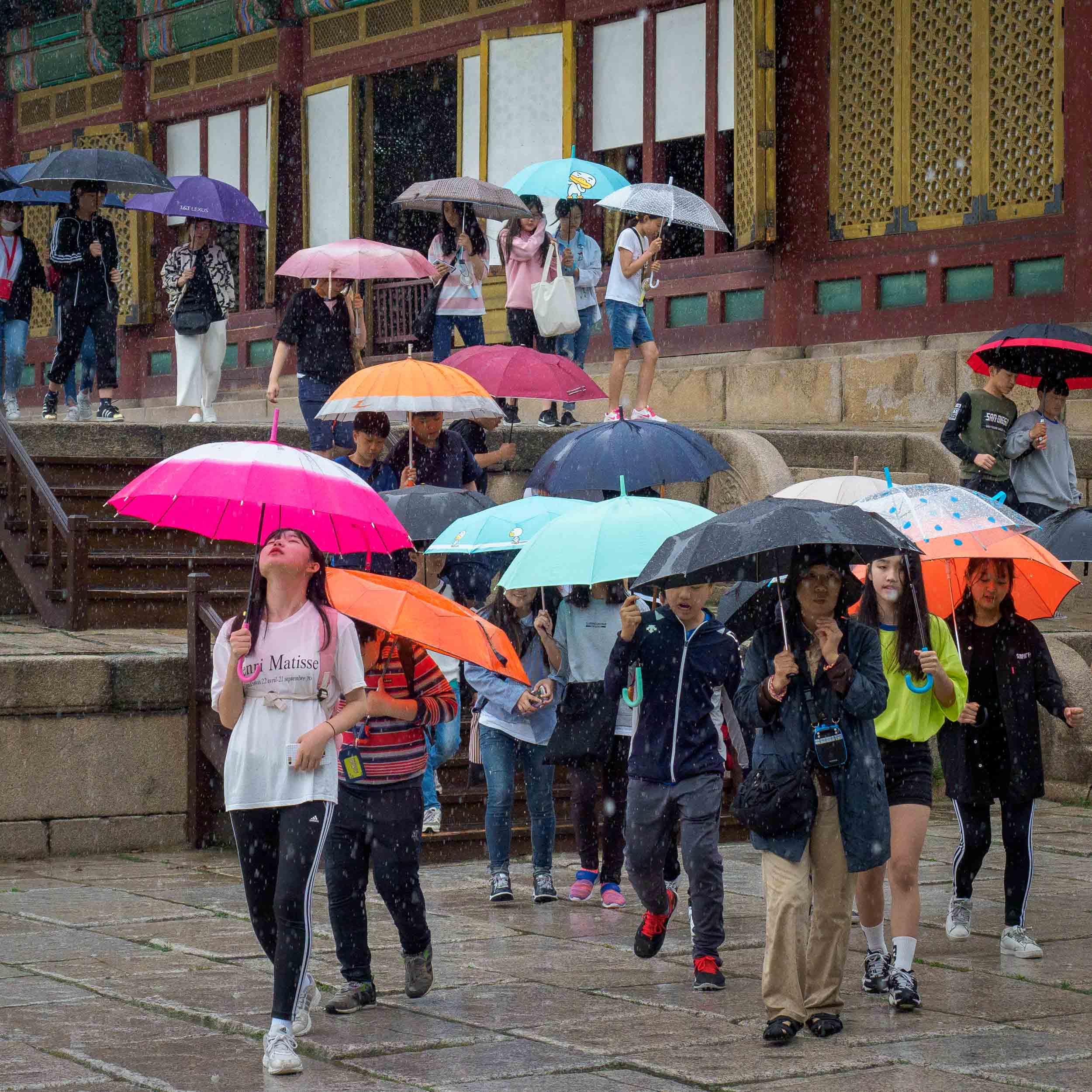 Seoul Rain 020419.jpg
