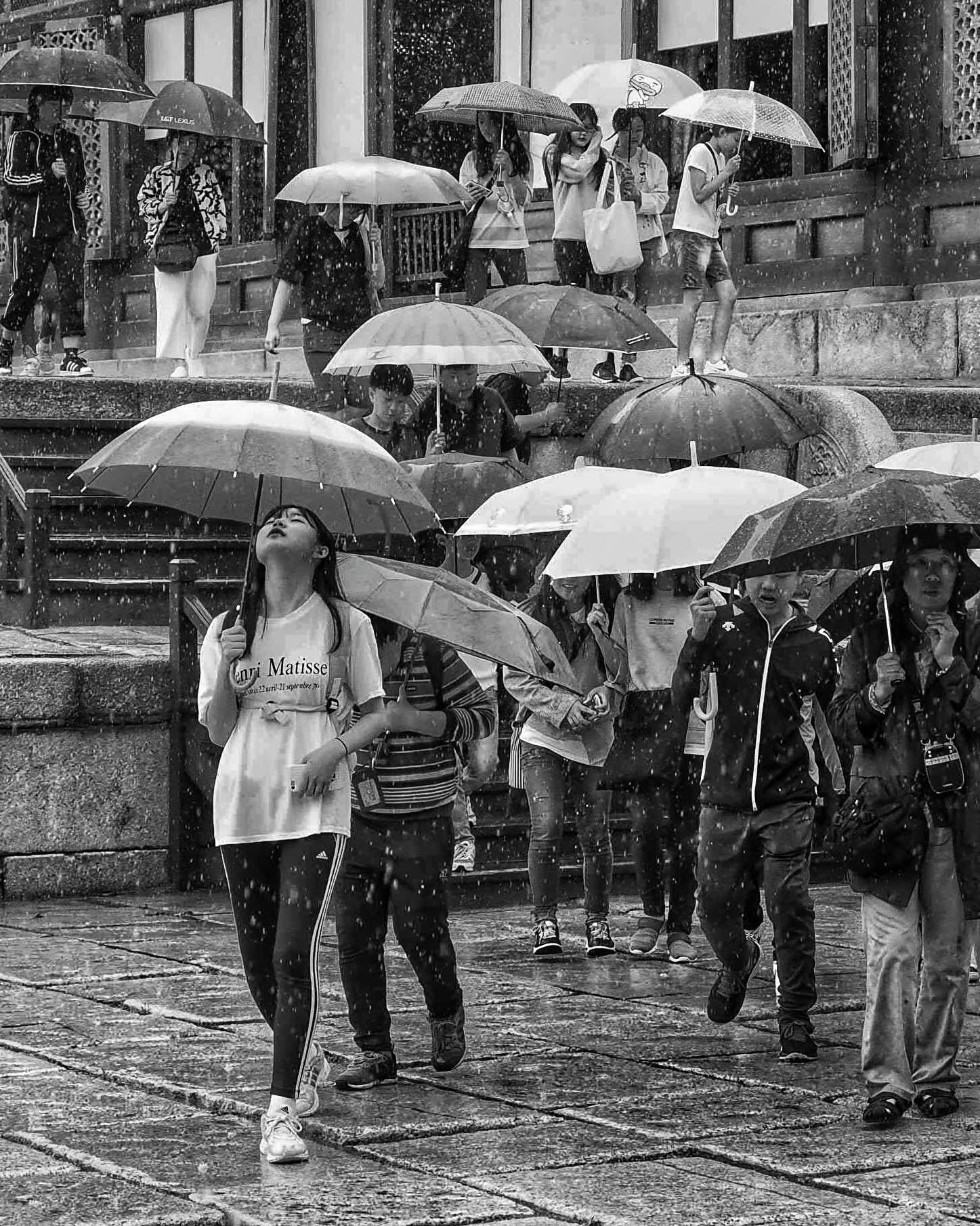 Seoul Rain 3 021419 062519.jpg