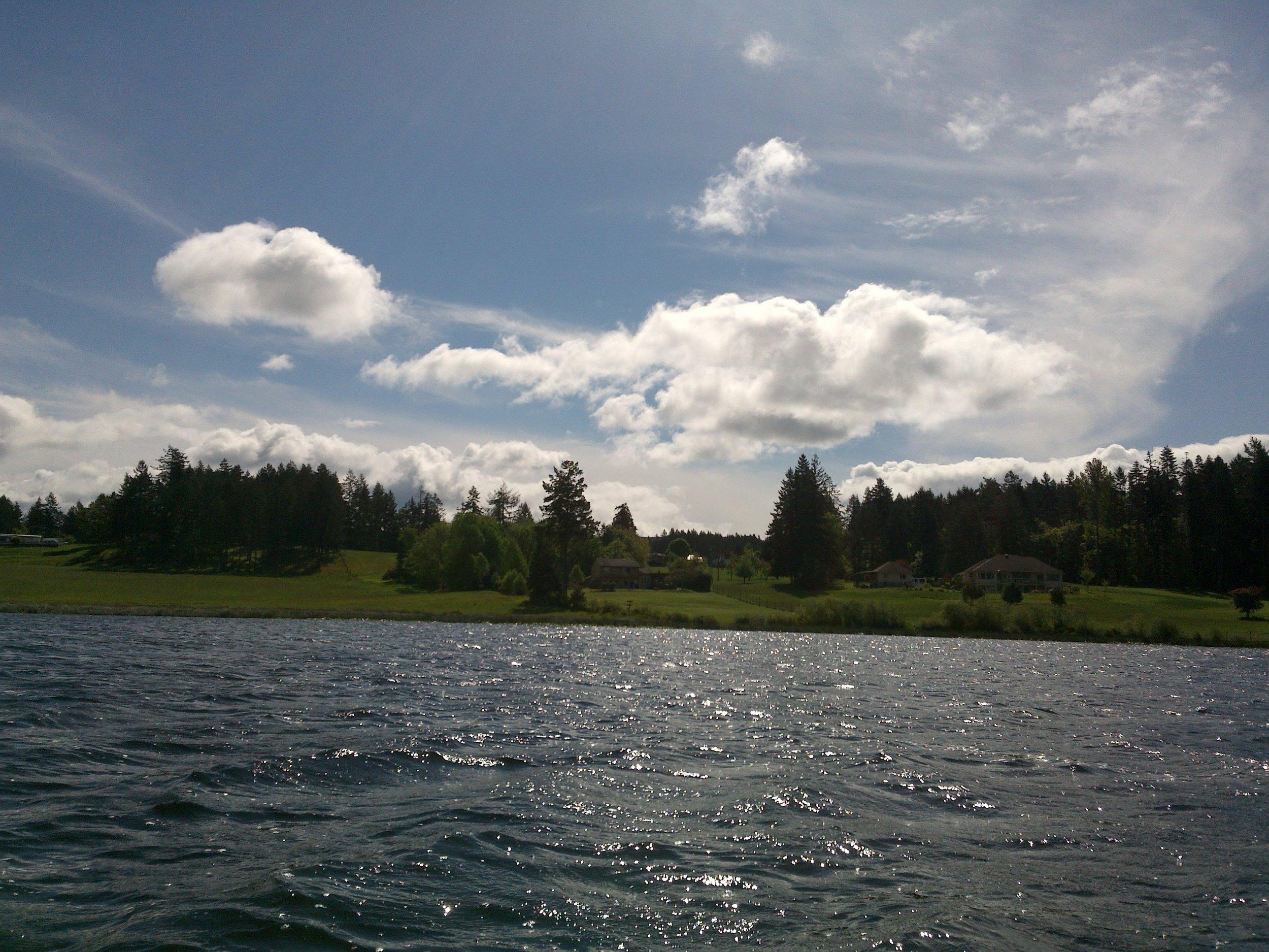 Somenos Lake with lakefront properties 2015 - Photo by Elizabeth Aitken