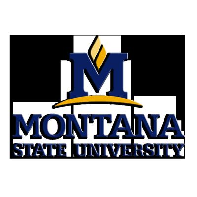 Montana State Logo.png