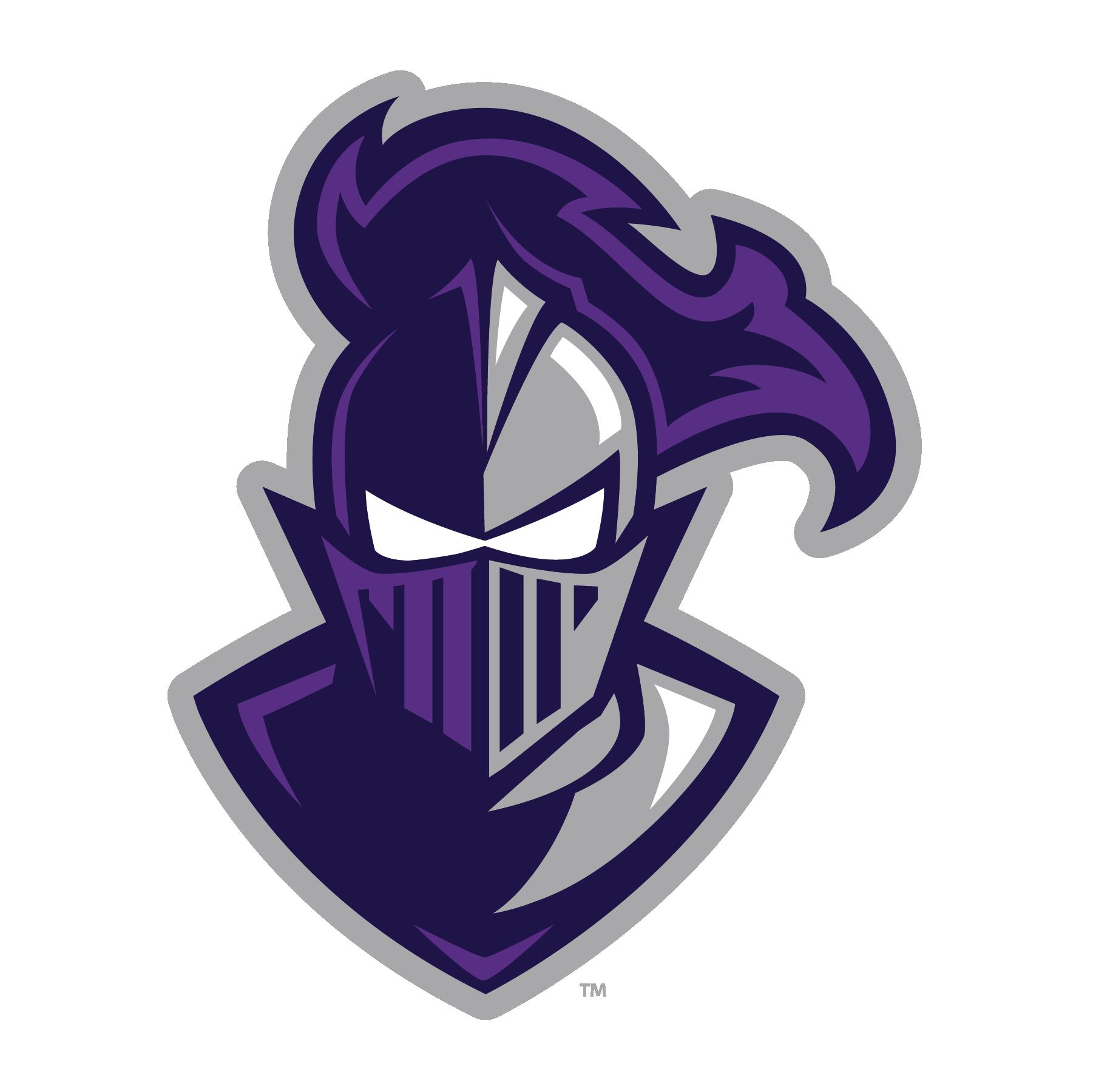 Paladin-Head-Logo-RGB.png