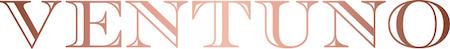 Ventuno_Logo.jpg