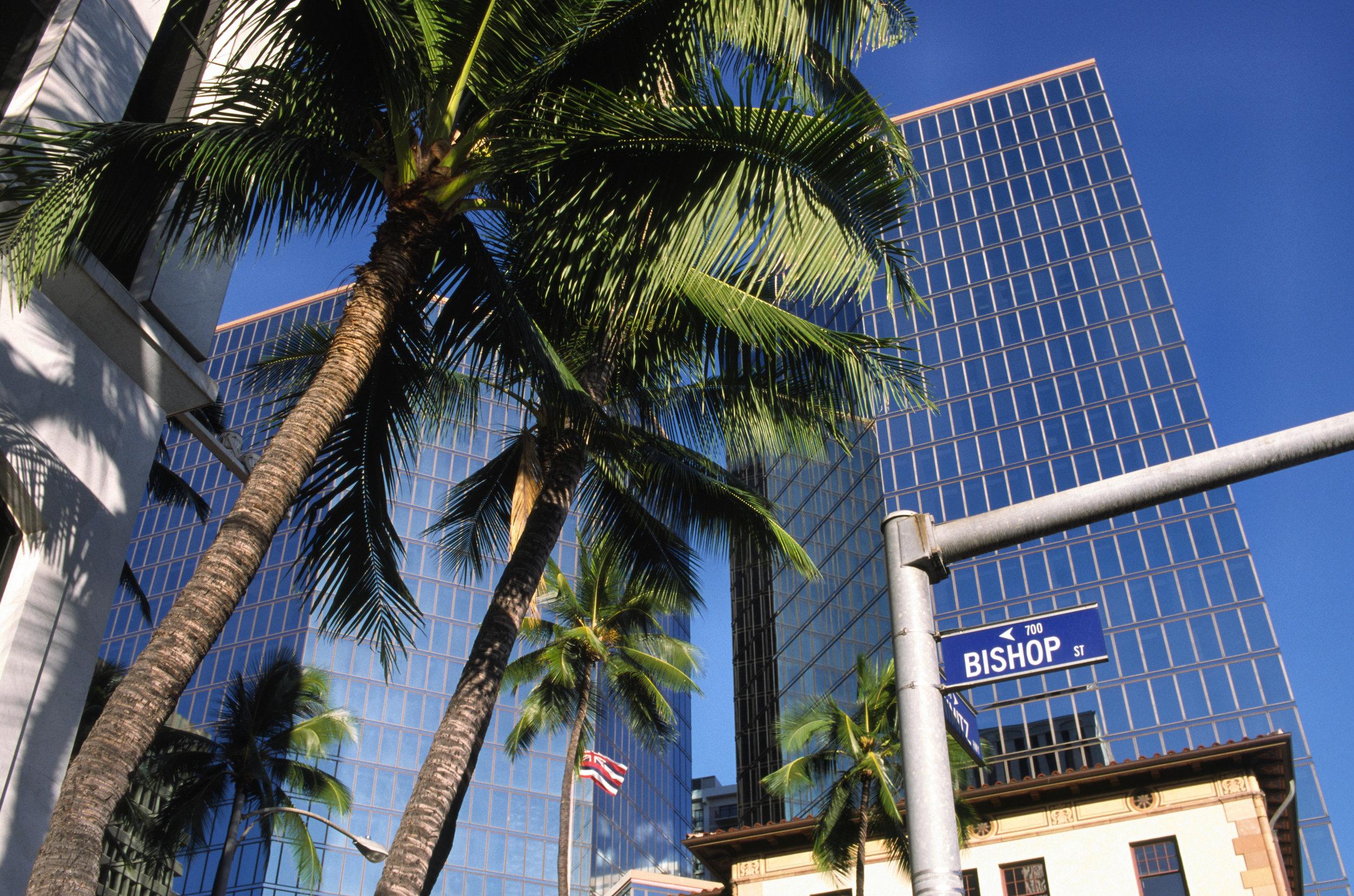 Business Litigation -