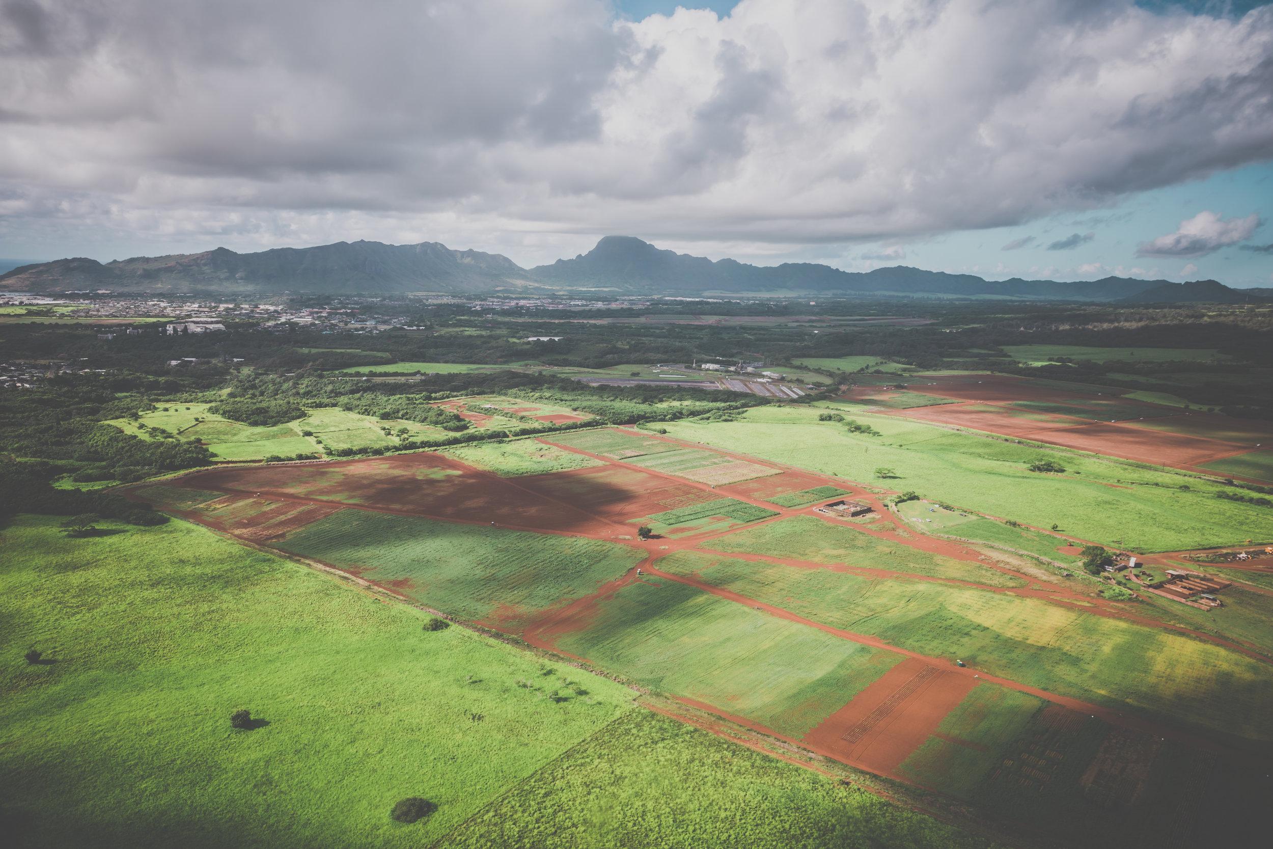 Land Use & Real Estate Development -