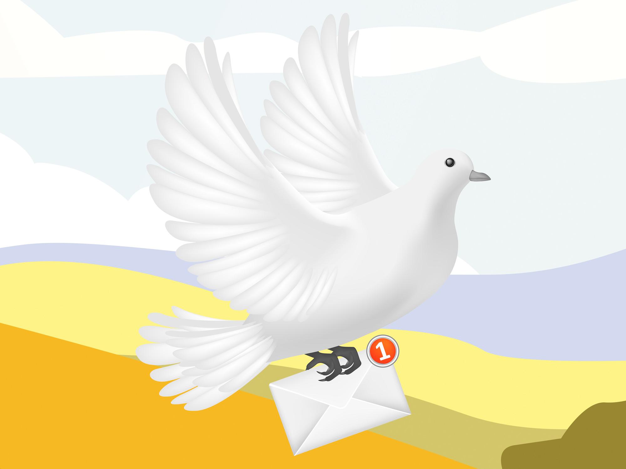 carrier-pigeon.jpg