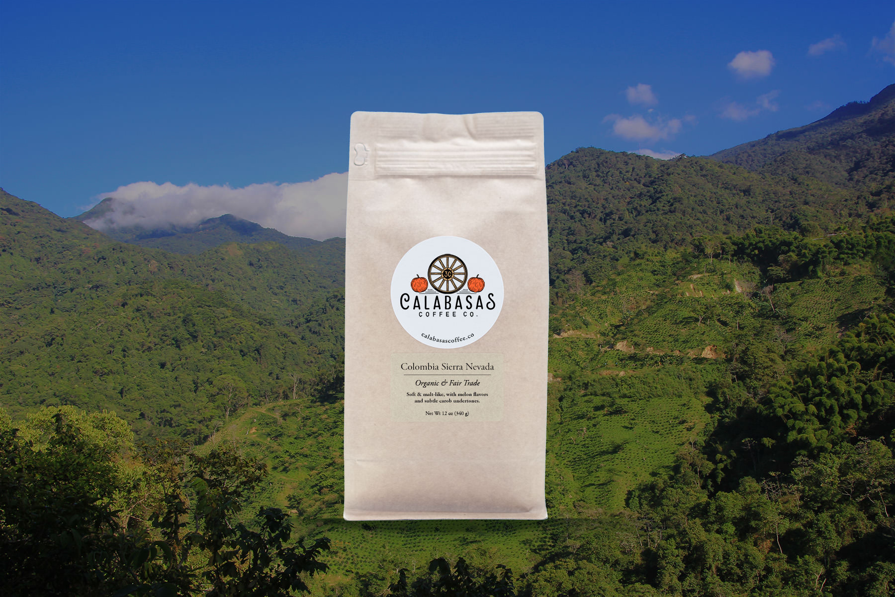Colombia Sierra Nevada - A smooth operator. Soft and malt-like, with melon undertones.
