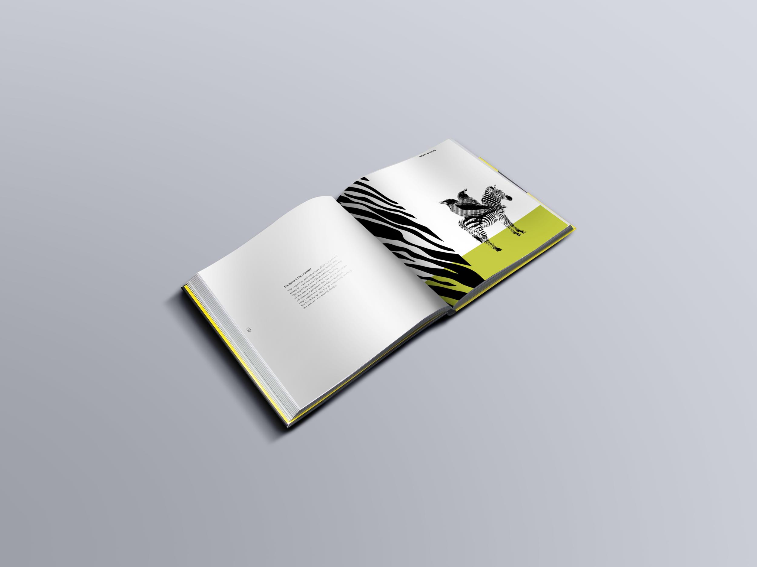 Square-Book-Mockup.png