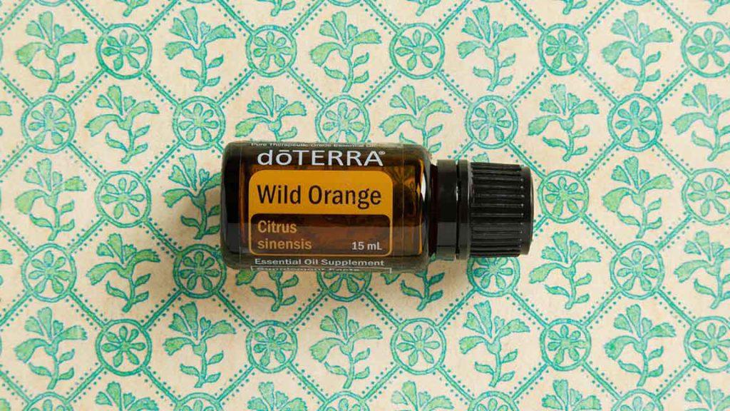 Wild Orange Spotlight