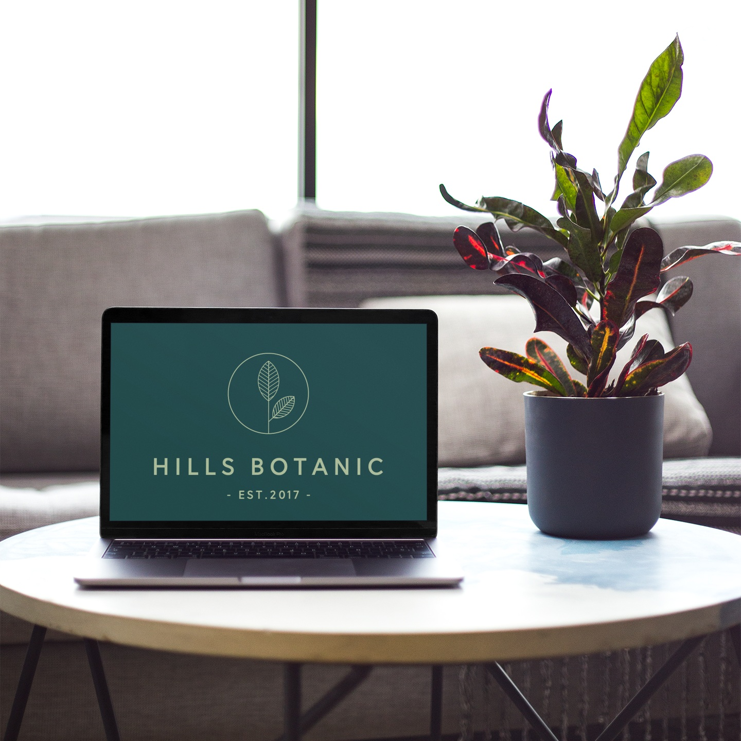 macbook-mockup-on-a-coffee-table-next-to-a-plant-pot-21615.png