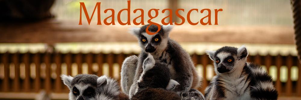 MADAGASCAR NEW.jpg
