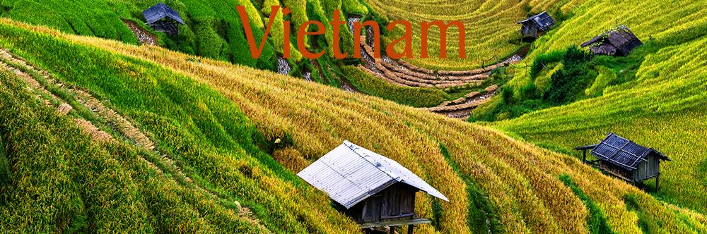 vietnam new 2.jpg
