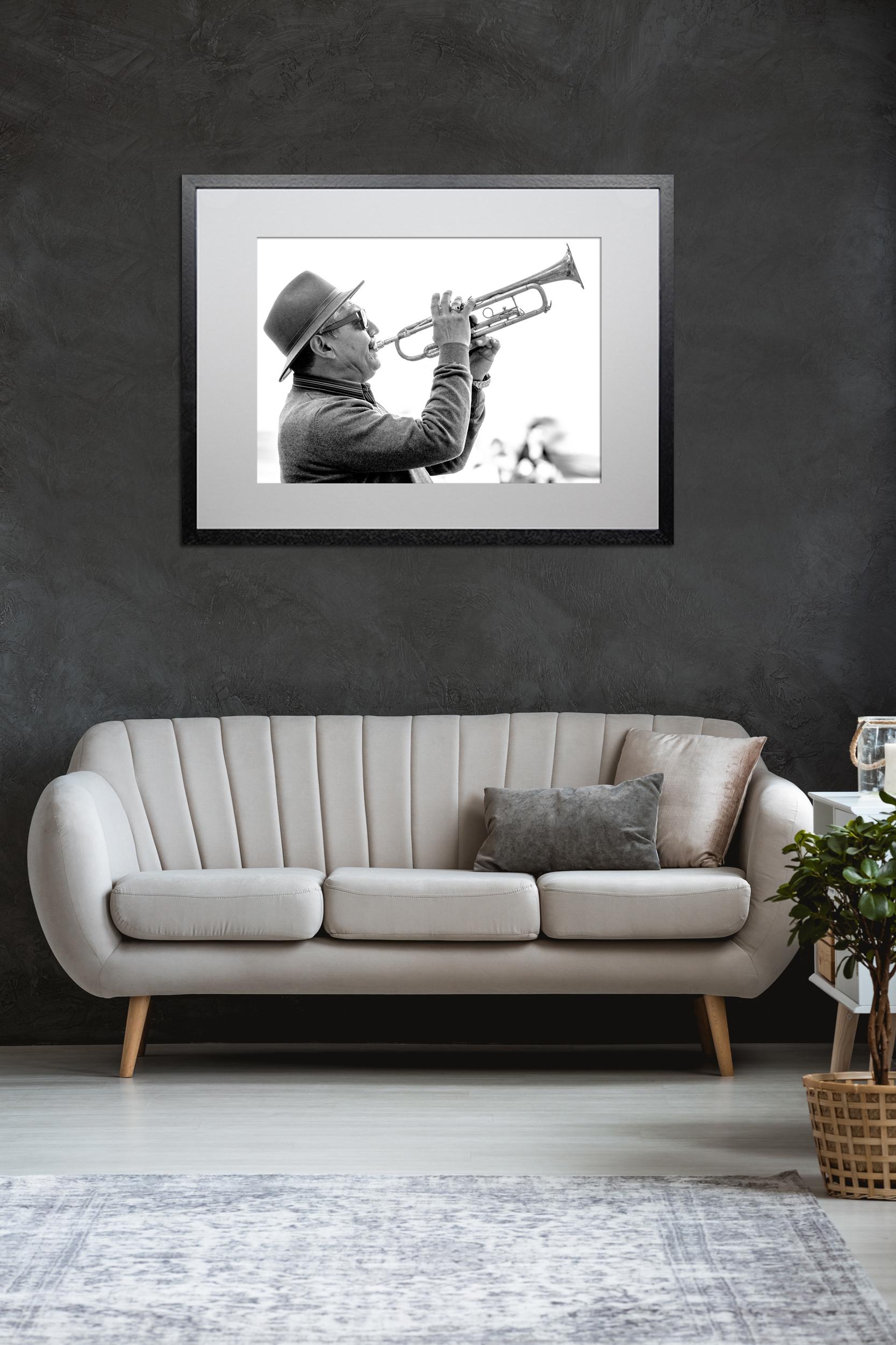 Avignon Trumpeter