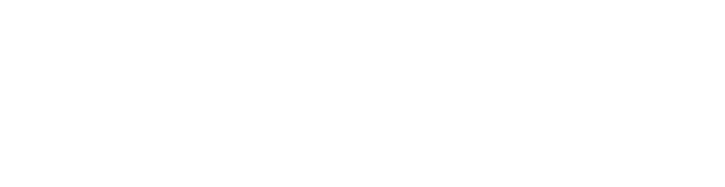 O2NoseFilters-Logo-White-Long.png