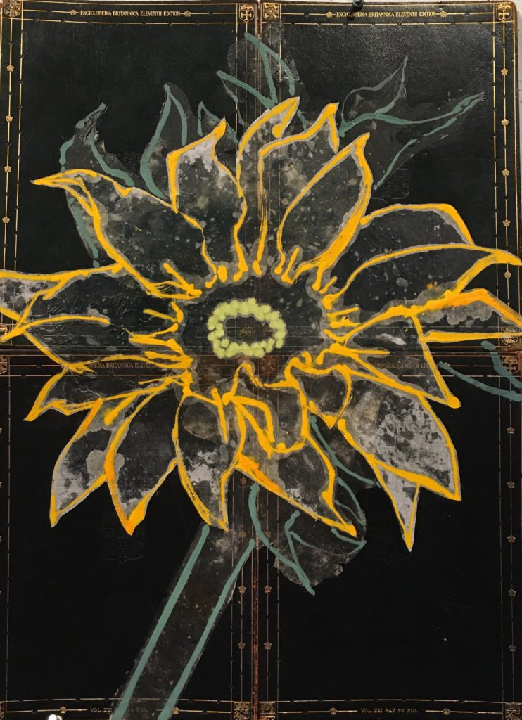 Robert Kushner, Sunflower, 2018 Any flower painter has to deal with Sunflowers and their intense association with van Gogh. It is a challenge to make them my own.