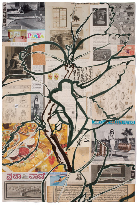 Robert Kushner, Camelia Branch V, 2016, acrylic, ink and collage on paper, 99 x 66 cm