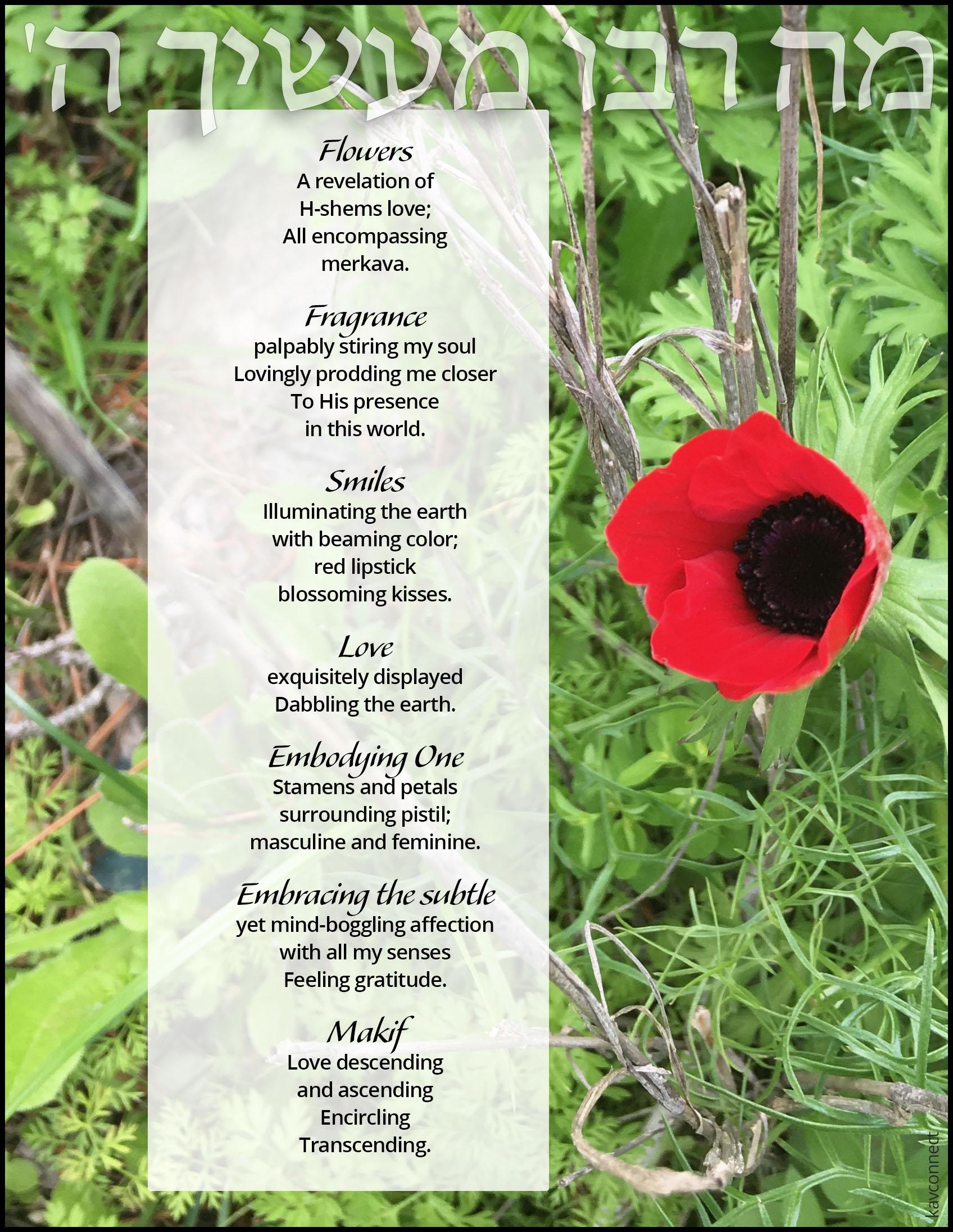 flower poem.jpg