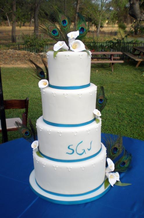 ingrid-fraser-cake-cake-blue-ribbon.jpg