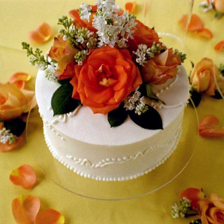 ingrid-fraser-cake-single-white.jpg
