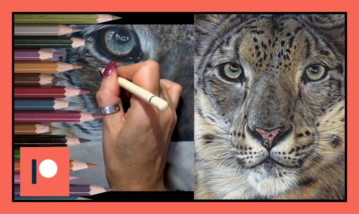 Snow Leopard - Part Three.jpg