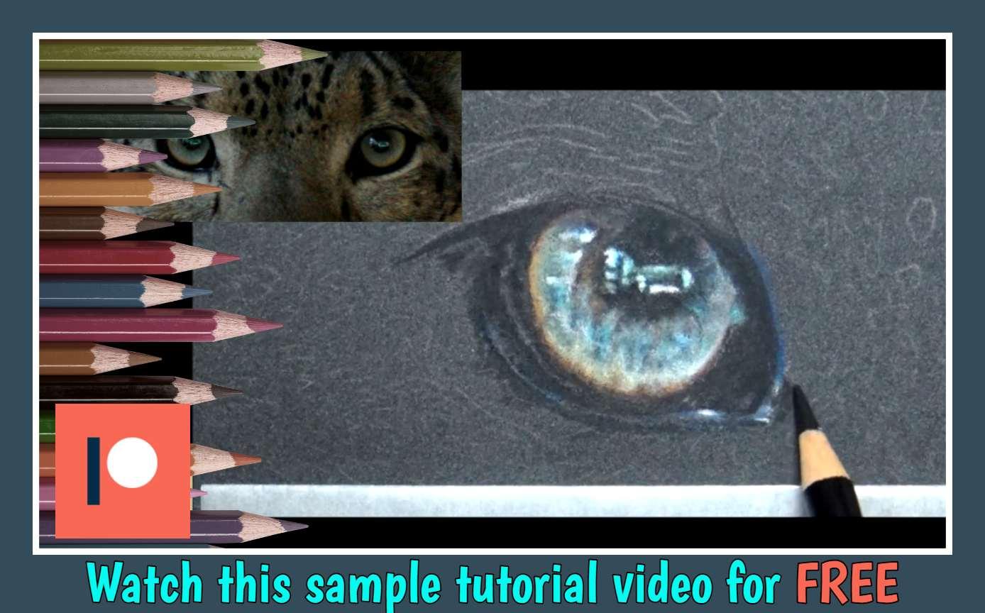 Snow Leopard tutorial - Part One.jpg