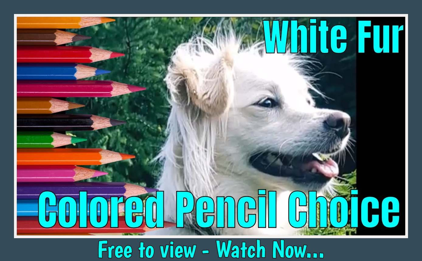White Fur - How to choose your pencils.jpg