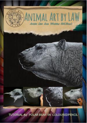 Polar+Bear+cover.PNG