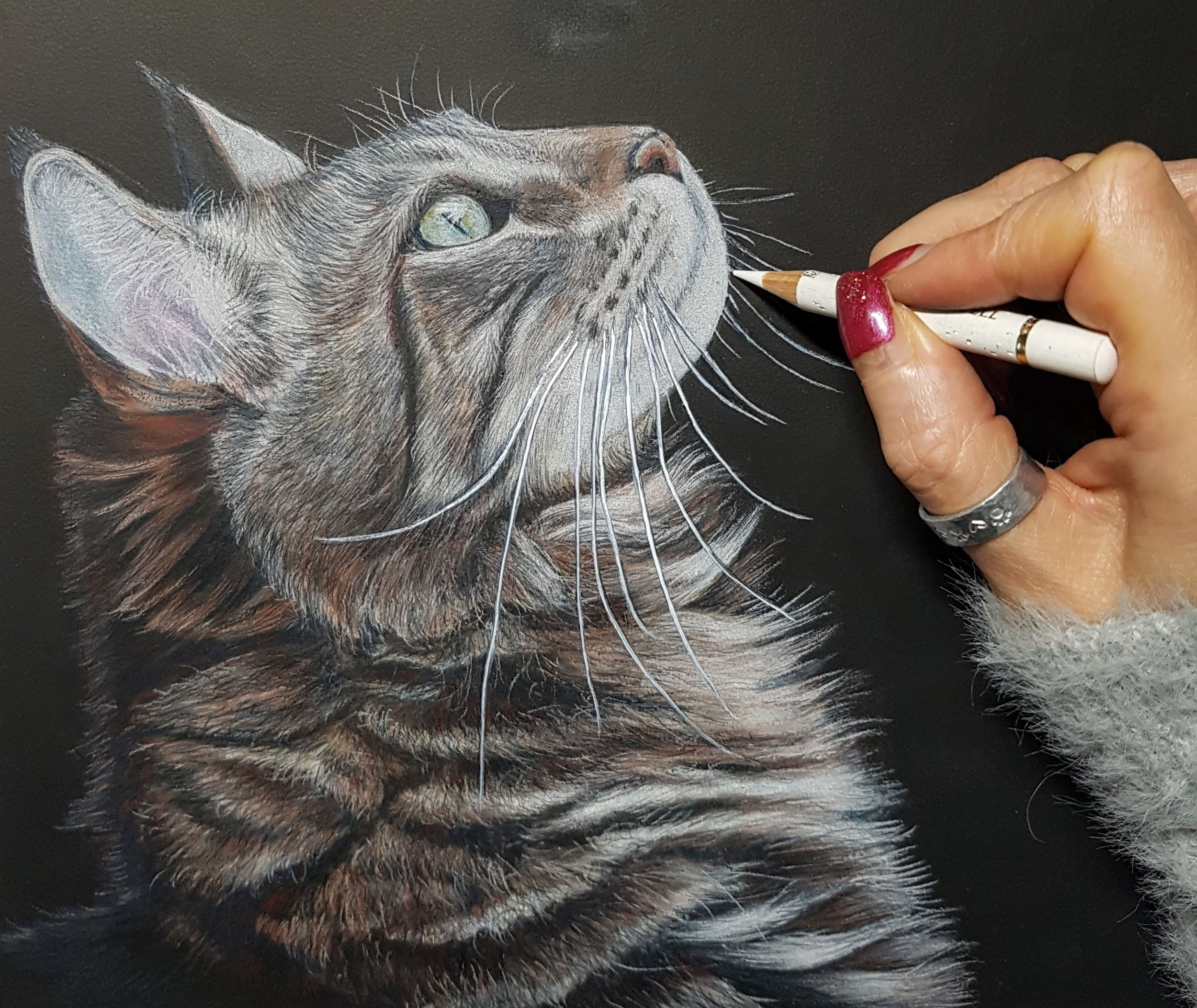 - Working with PanPastel & Coloured pencils on black paper
