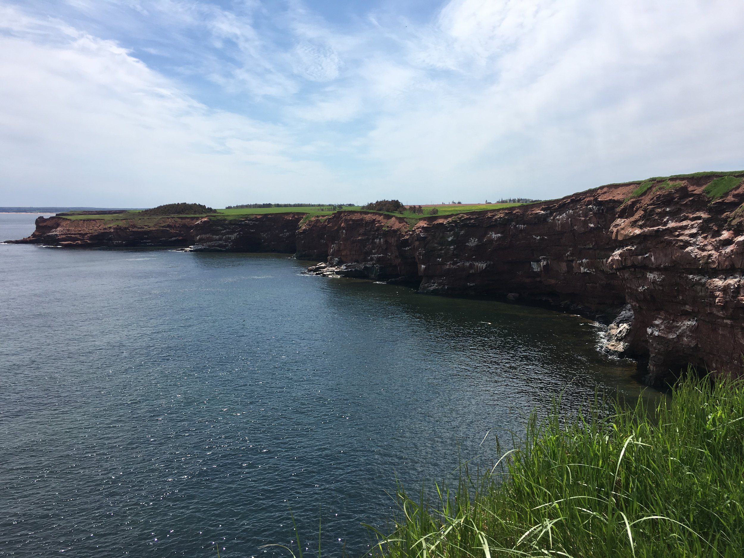 Outcrops on PEI. Red Sandstone contributes to red sand beaches