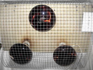 The sauna's three near infrared bulbs