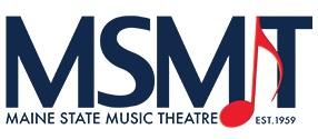 MSMT+Logo.jpg
